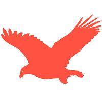飞鹰资讯app转发赚钱v1.40安卓版