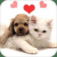 人猫狗翻译器app