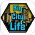 大城市生活模拟器中文破解版无限金币